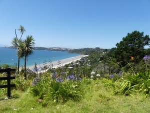 Waiheke Island – Welcome to Paradise